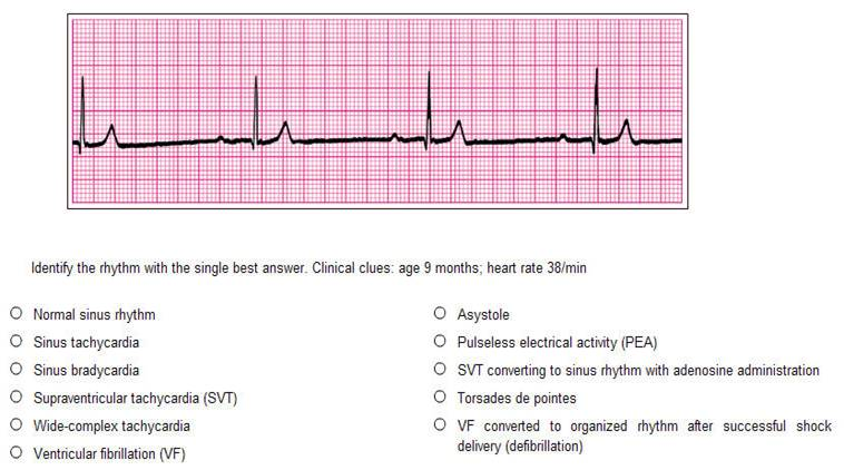 Acls pretest 2010 answer key.